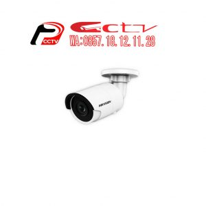 IP Kamera DS-2CD2023G0, Hikvision DS-2CD2023G0, Kamera Cctv Temanggung, Hikvision Temanggung, Security Alarm Systems Temanggung, Jual Kamera Cctv Temanggung, Alarm Security Temanggung