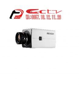 IP Kamera DS-2CD2821G0, Hikvision DS-2CD2821G0, Kamera Cctv Kudus, Hikvision Kudus, Security Alarm Systems Kudus, Jual Kamera Cctv Kudus, Alarm Security Kudus